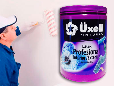 Latex profesional int/ext